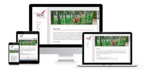 Read more about the article Webdesign für den Journalisten Christian Noe